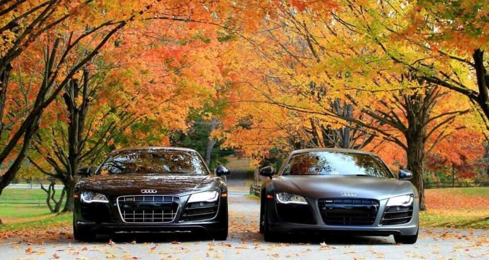Покупка машины осенью