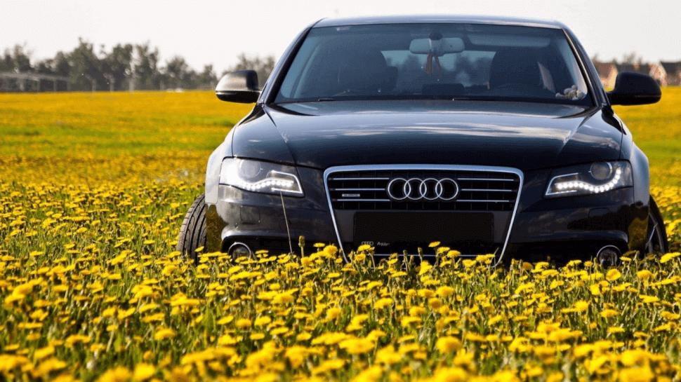 Покупка машины весной