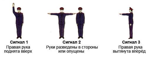 signal-regulirovshika